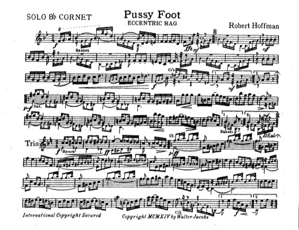 Pussy Foot